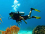 Global Dive Academy